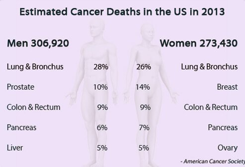 Estimated cancer deaths U.S. in 2013.