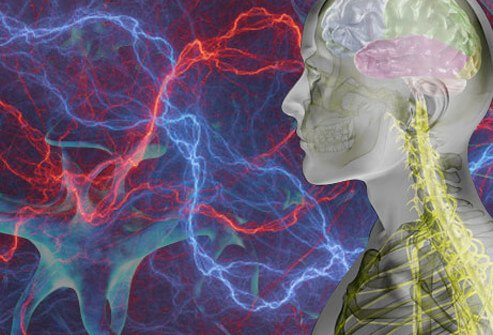 Pain signals the nerves to your brain and acts a warning.