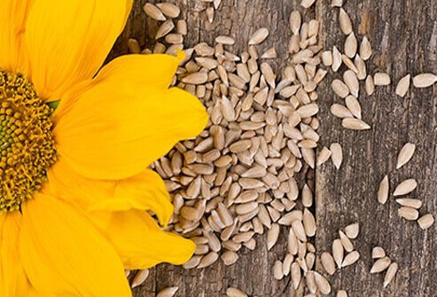 Healthy Seeds 11 Edible Super Seeds For Better Nutrition