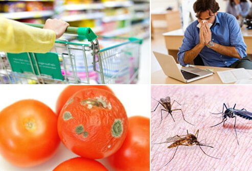 Common transmission of viruses can spread by touch, air, contaminated food, and insects.