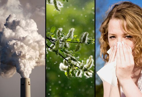 A smokestack emits greenhouse gases and irritants (left), pollen floats in the air (center) and a woman sneezes due to allergens (right).