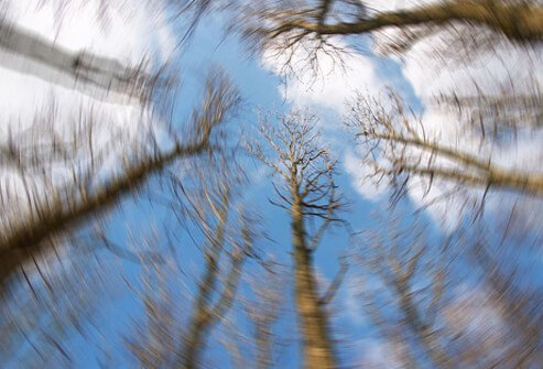 Vertigo is a hallucination of motion that in most cases implies a disorder of the inner ear or vestibular system.