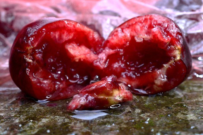 Cherry pits contain cyanide but they pass through your system if you accidentally swallow them.