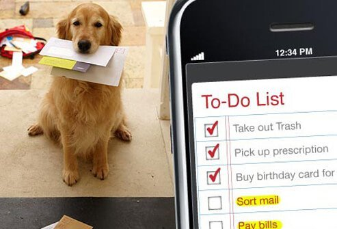 Photo of a dog and a to-do list.