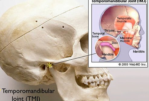 A skull showing the temporomandibular joint with an illustration callout showing TMJ in more detail.