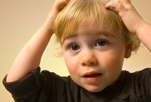 Lice Amp Nits How To Get Rid Of Head Lice