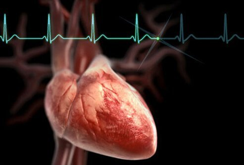An illustration of the human heart; beta blockers treat high blood pressure.