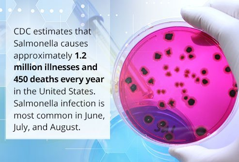 Salmonella kills 450 people each year in the United States.