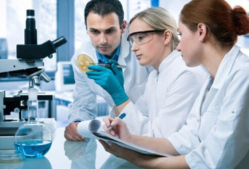 A group of scientists study staphylococcal cultures in a laboratory.