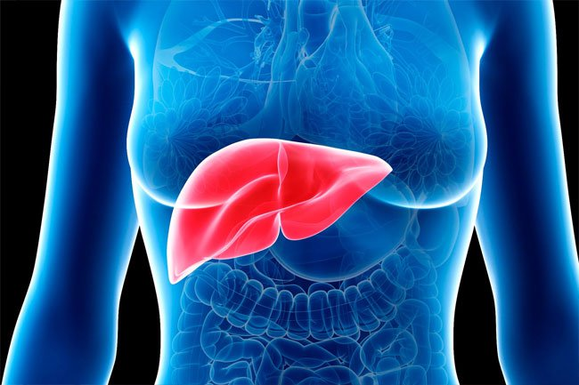 There are more than 100 different liver diseases, but with similar symptoms.