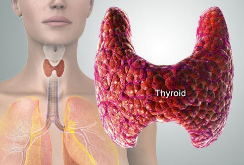 Thyroid Problems Explained