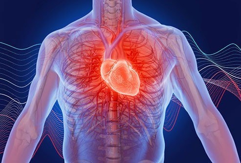 Heart palpitations are common and often do not have a serious underlying cause.