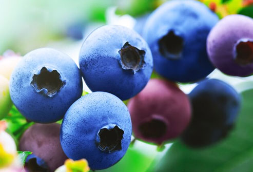 Frozen berries are less likely to become moldy than fresh ones.