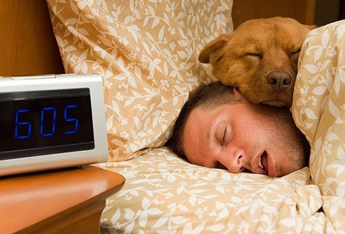 All night long, your body and brain do quite a bit of work that is key for your health.