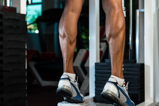There's a group of muscles on the back of each lower leg called calf muscles.